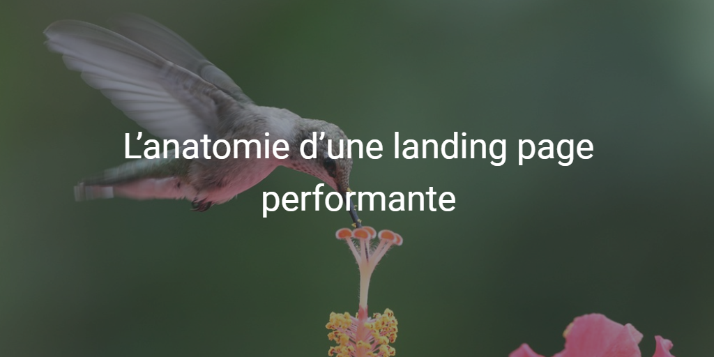 Anatomie d'une landing page
