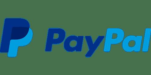 Paypal, une position de leader malgré des défauts importants