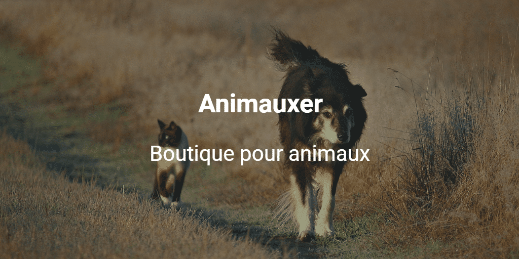 Animauxer
